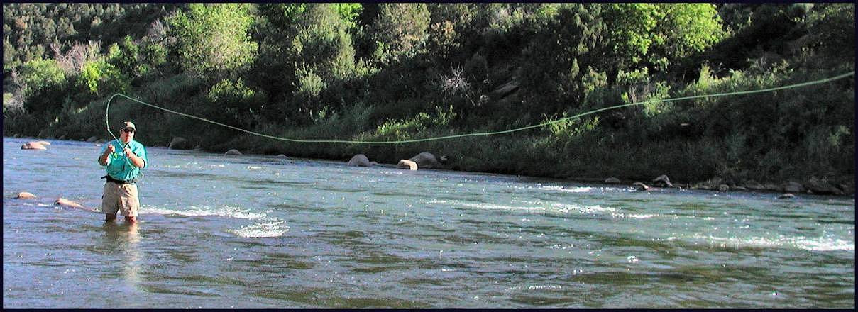 Fly fishing in the durango area san juan river fly for San juan fly fishing